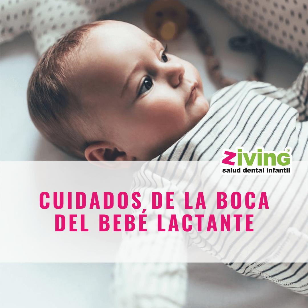 Ziving ortodoncia Palma. vigila la salud bucal de tu bebe